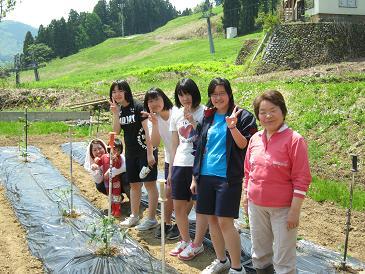 農業体験110519-2