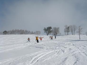 新雪にみんなでシュプールを描く