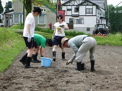 農作業3‐090521