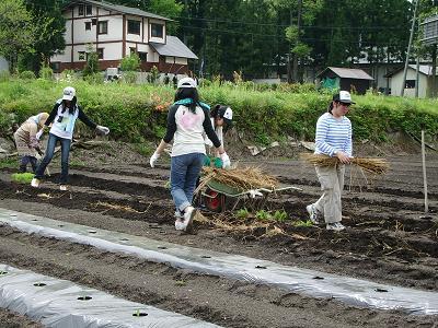 農作業2‐090521